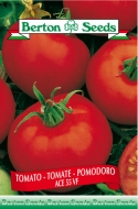 Ace 55 VF Tomato Seeds