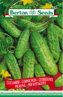 Pickling Cucumber Seeds
