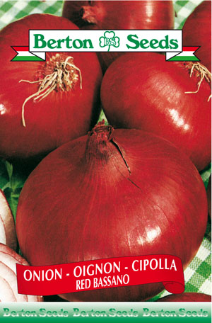 Red Bassano Onion