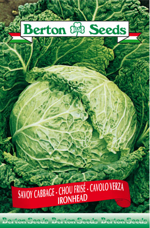 Iron Head Savoy Cabbage Seeds