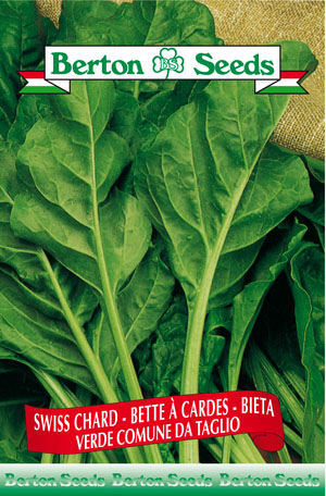 Green Smooth Swiss Chard Seeds