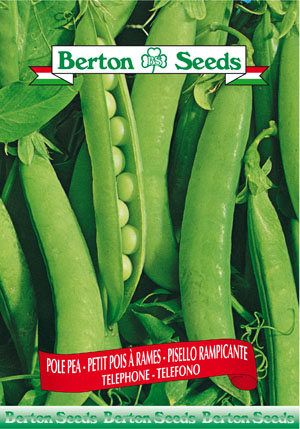 Telegraph Pole Pea Seeds